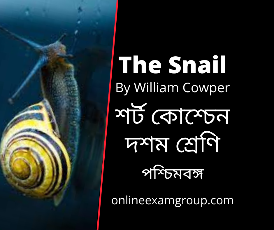 Short Questions from The Snail